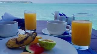 Summer Island Maldives Februar 2018 Malediven
