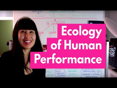 Ecology of Human Performance (EHP) Model