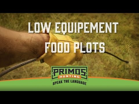 Planting a No Till Food Plot video thumbnail