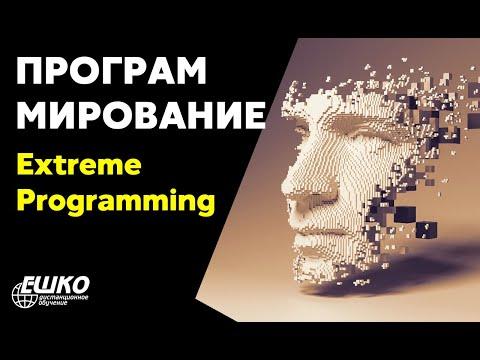 """Видео-вебинар по курсу """"Программирование для начинающих"""". Экстремальное программирование"""