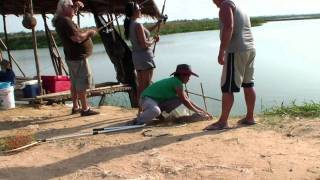 preview picture of video 'Catfish fishing in Khon Kaen, Thailand'