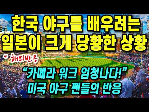 한국 야구를 배우려는 일본이 크게 당황한 상황