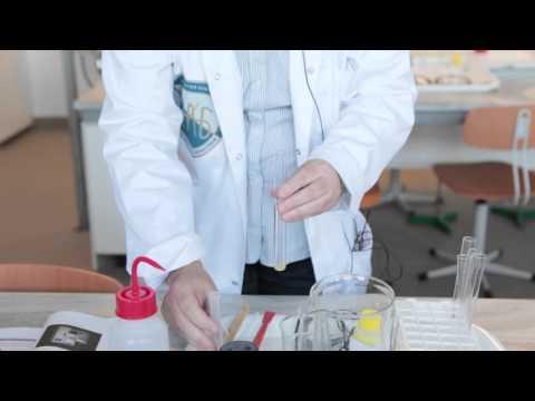 Arthro ízületi gyógyszer-értékelések
