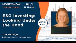 ESG Investing: Looking Under the Hood