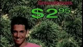*Flowering Trees* +Red Dogwood Tree+Crape Myrtle+1983 TV Ad+