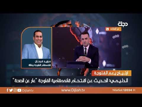 شاهد بالفيديو.. الدليمي : الحديث عن اقتحام قائممقامية الفلوجة