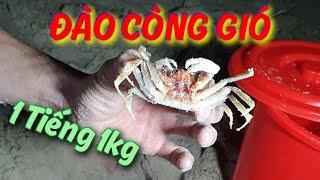 Cùng KST Đào CÒNG GIÓ Tại Biển Đêm Đà Nẵng
