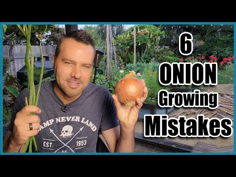 , title : 'How to Grow Onions from Seed