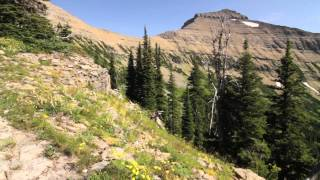 Trip video from Cut Bank Trailhead over Cut Bank Pass to Nyack Creek and back.