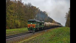 Тепловоз 2ТЭ10У-0081 с грузовым поездом на Могилёв.