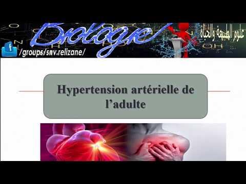 Pour traiter les médicaments de lhypertension artérielle