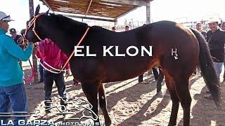 ESTELAR DE LUJO | KLON VS GATO NEGRO | DE LA GARZA PHOTOFINISH