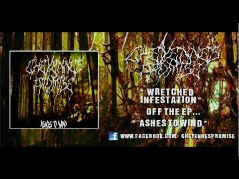 CHEYENNE'S PROMISE - WRETCHED INFESTATION (NEW SONG FT. MARCO MCBRUTAL FROM AWAKE TO THE SOUNDS)