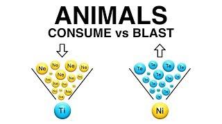 ANIMALS: Consume vs Blast
