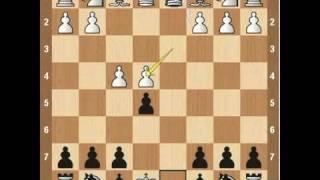 Chess Openings- Falkbeer Countergambit