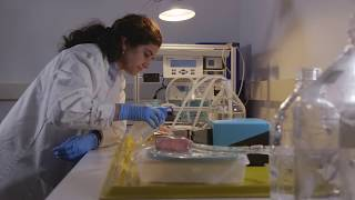 The Accelerating Innovative Medicines Challenge - part of the Industrial Strategy Challenge Fund