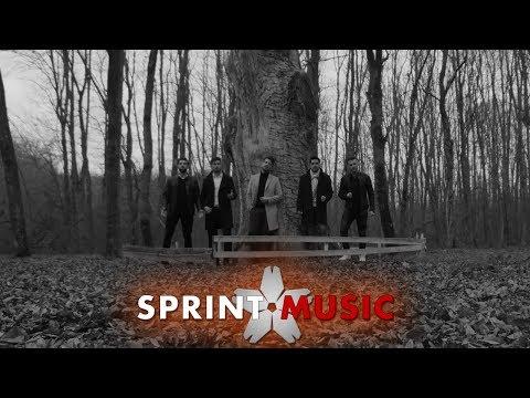 Brio Sonores – Copacul Video