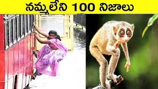 Top 100 Interesting And Unknown Facts In Telugu | Amazing Facts In Telugu | CTC Telugu Facts