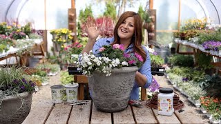 Flower Alley Part 2: Simple Container Ideas For Full Sun! ☀️💚// Garden Answer