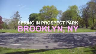 Spring Day Prospect Park Brooklyn Shot with DJI Osmo Pocket in 4K