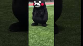 くまモンがラグビーに挑戦してみた!【パスキャッチ編】