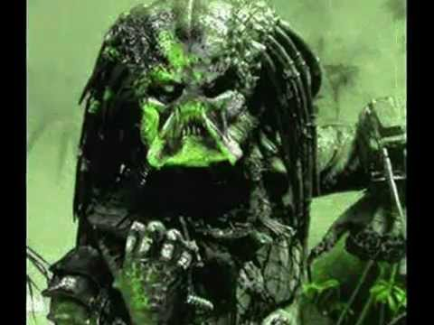 PREDATOR BEAT.wmv