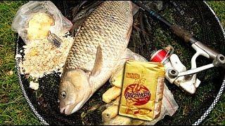 Овсяная каша для рыбалки своими руками