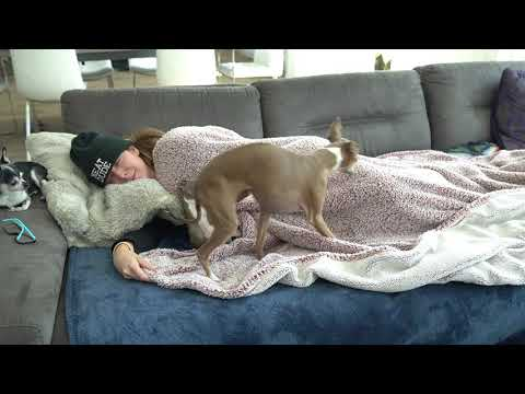 Taking A Nap For 20 Million Subscribers