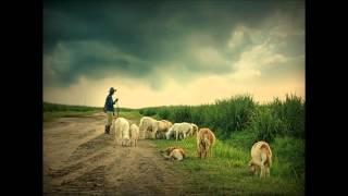 Dan   Fogelberg   Wandering Shepherd