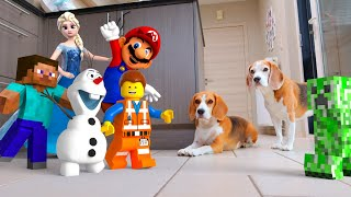 Animation in Real Life Compilation! Lego Emmet , Mario , Minecraft , Frozen and more!