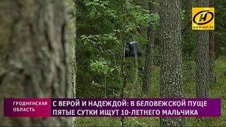 В Беловежской пуще пятые сутки ищут десятилетнего мальчика