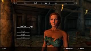 Skyrim PS4 Mod: PS4 Bikini Armor
