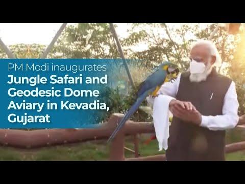 पीएम मोदी ने केवडिया, गुजरात में जंगल सफारी और जियोडेसिक डोम एवियरी का उद्घाटन किया पीएमओ