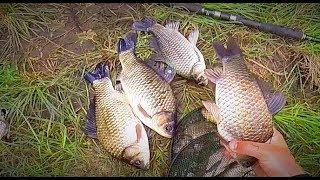 Рыбалка в сибири на карася