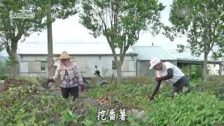 【農夫與他的田】20131102 - 行健有好田