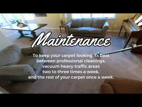 Carpet Cleaning Tips & Recommendations