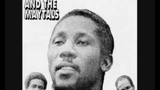 Toots And The Maytals   54 46 Thats My Number