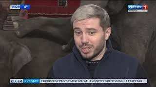 История со слонами в валенках в Новокузнецке получила продолжение
