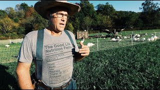 How Joel Salatin's Farming Style CAN Feed the World