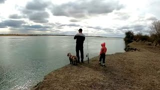 Турнир по рыбалке в сарапуле 2020