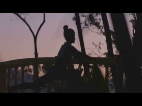 Fenda (feat. Razor) – Love's Gone (Video Edit)