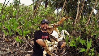 Brave Tourist Comes Across A Terrifying Creature And Decides To Pick It Up With His Bare Hands