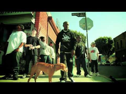 David Dallas - Caught In A Daze (ft. Freddie Gibbs) [Music Video]