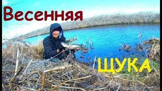 Отчеты с рыбалок киевская область