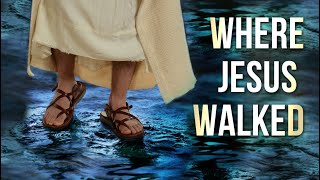202 - Where Jesus Walked / Total Onslaught - Walter Veith