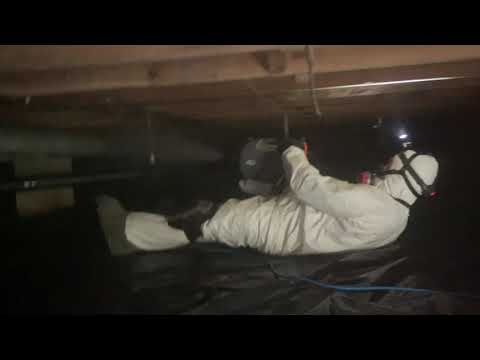 After a thorough inspection of a homeowners crawl space in Point Pleasant, NJ we found mold under the floorboard joists due to high levels of moisture in the basement. Crawl space mold is easy to ignore since most of us try to avoid the dark, musty space.