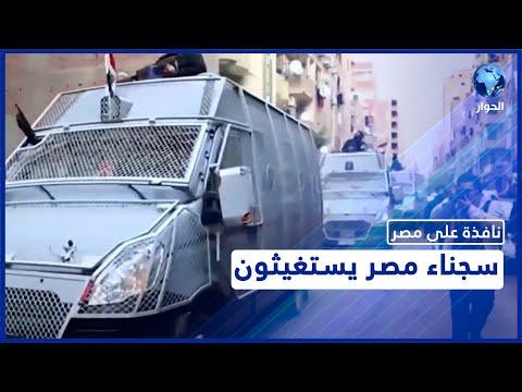 سجناء مصر يستغيثون