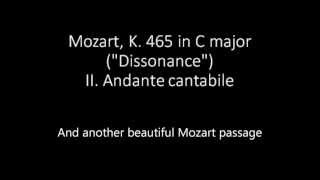 Mozart and Haydn: most sublime moments from string quartet slow movements