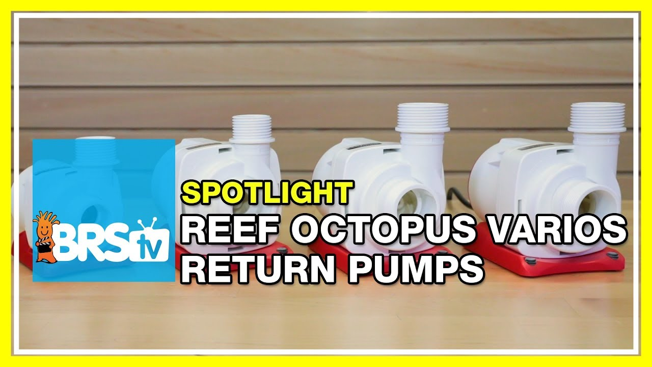 Spotlight on the Reef Octopus VarioS DC Powered Return Pumps - BRStv