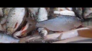 Зимняя рыбалка в Воркуте.Озеро Мануты.